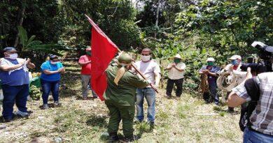 Abanderan en las montañas de Jibacoa primera brigada de desmochadores de palmas