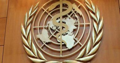 Sesionará lunes y martes de modo virtual la Asamblea Mundial de la Salud
