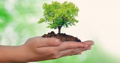 Destacan a Villa Clara en la preservación del Medio Ambiente